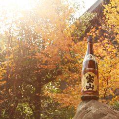 蔵の紅葉と、宝山の四季。